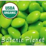 Soya Bean Oil ORGANIC (USA)