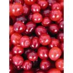 Cranberry Fruit P.E. 4:1