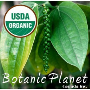Pepper Black Essential Oil (ORGANIC)