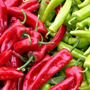 Chilli Seed Essential Oil (Ethiopia)