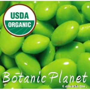 Soya Bean Oil ORGANIC (USA)