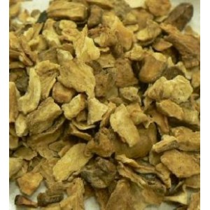 Chicory Root CS RAW