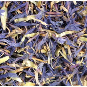Cornflower Dried