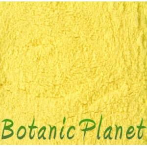 Corn Flour Exfoliant