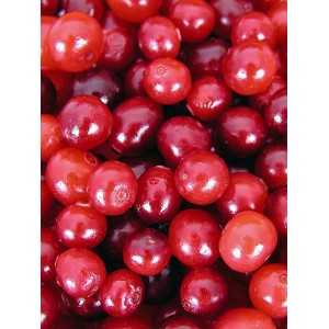 Cranberry Fruit P.E. 4:1