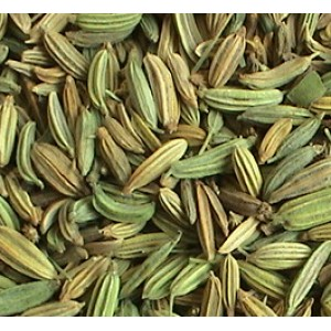 Fennel Seed P.E. 4:1